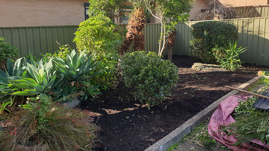 Playford-Garden-Care-Northern-Yard-Cleanup-Rubbish-Removal-Services-after3