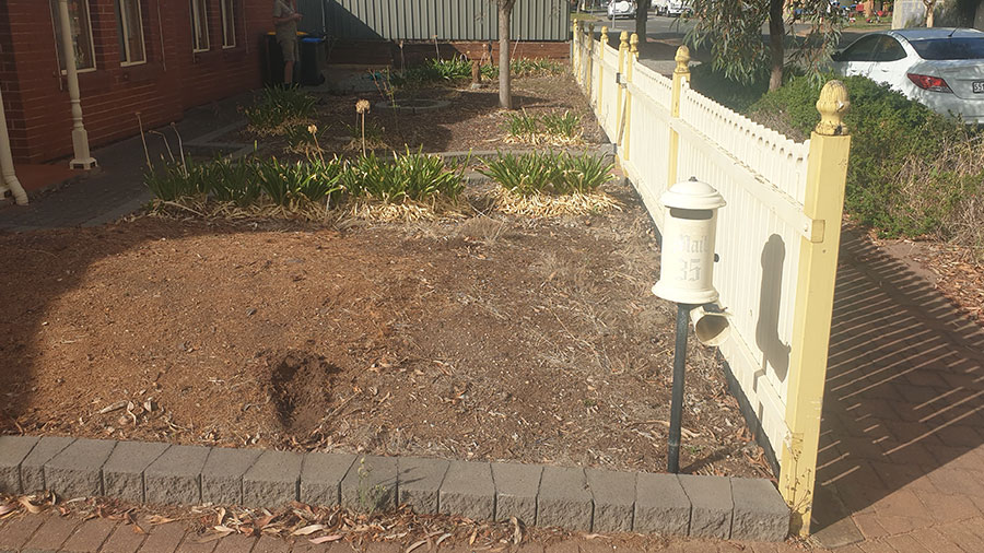 Playford-Garden-Care-Northern-Yard-Cleanup-Rubbish-Removal-Services-before