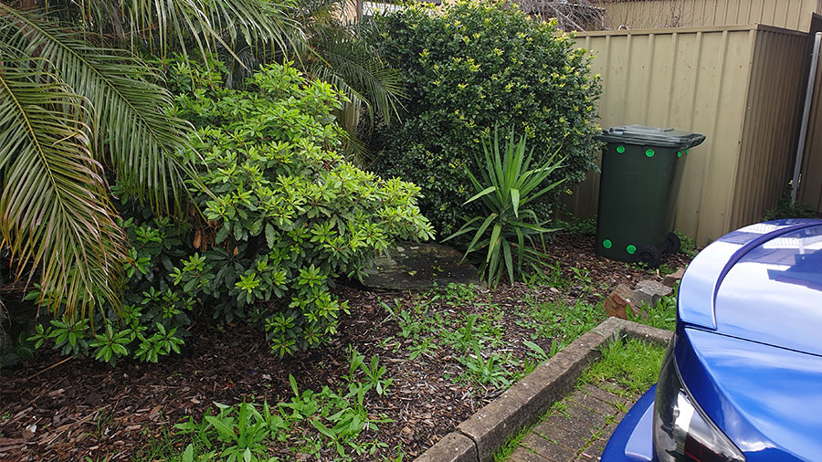 Playford-Garden-Care-Northern-Yard-Cleanup-Rubbish-Removal-Services-before3